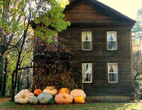 otoño_10