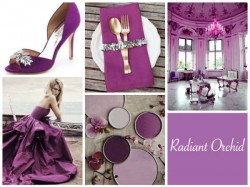 Radiant-Orchid-Collage-UK